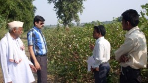 Indian Cotton Market: Poised to Benefit from Value Addition