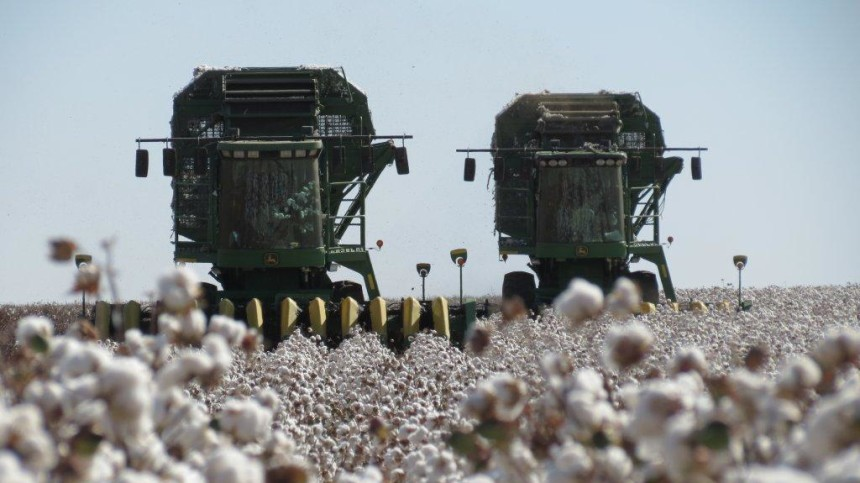 USDA Projects 10 Million Cotton Acres for 2013