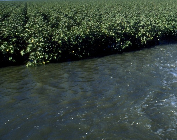 NCC Applauds EPA, COE for New Waters of the U.S. Rule