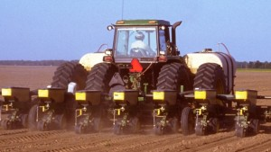 Choose Proper Seeding Rate for Optimum Plant Populations
