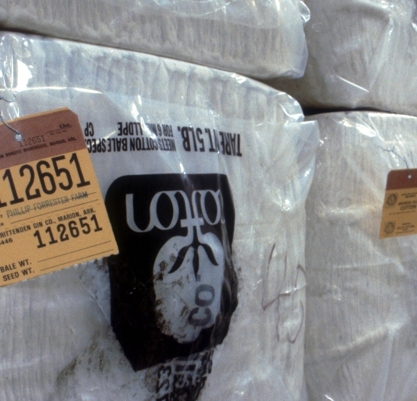 World Cotton Contract Back on Track?