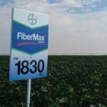 FiberMax Sign Web