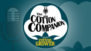Cotton Companion #53 – U.S. Cotton's Global Competition