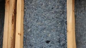 PhytoGen, Cotton Inc. Partner for Blue Jeans Go Green Program