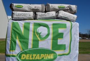 NPE Flag Bags Web