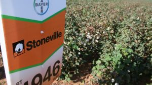 Bayer Opens New Southeast Cotton Breeding Station