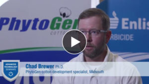 VIDEO: How PhytoGen Helps Growers Work Smarter with Technology, Native Traits