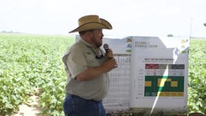 Improved Bollworm Management Expected in 2018