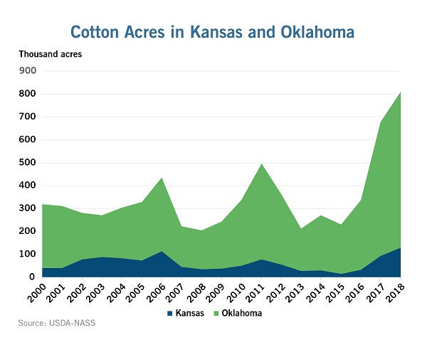 Southwest Growers Turning to Cotton Amid Drought, Grain Prices