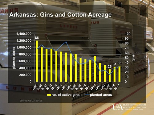 Arkansas Gin Numbers Rebounding as Cotton Acres Rise