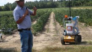 Clemson Researchers Studying Robotic Cotton Harvesting