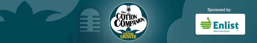 Cotton Companion #46 – Cotton Sustainability Programs; Cleveland On the Current Market
