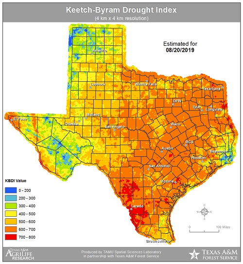 Texas Weather Swings from Extreme to Extreme in 2019