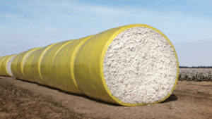 Texas A&M AgriLife Sets Second Cotton Contamination Webinar for May 5