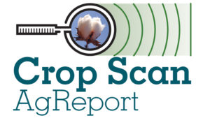 Crop Scan AgReport – What Will Sally Do?