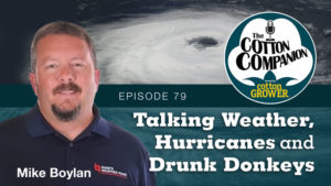 Talking Weather, Hurricanes and Drunk Donkeys