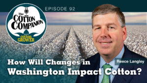 How Will Changes in Washington Impact Cotton?